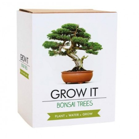Kit de cultivo BONSAI GROW IT