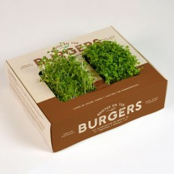 Kit auto cultivo Brotes BURGER